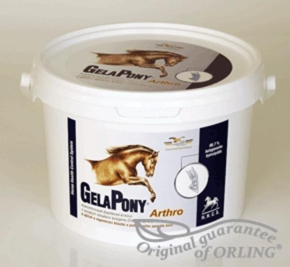 1447261063_thumbnail-290267-gelapony-artrho-1252571452.png