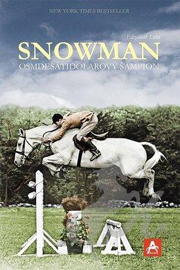 big_snowman-osmdesatidolarovy-sampion-twa-313336.jpg