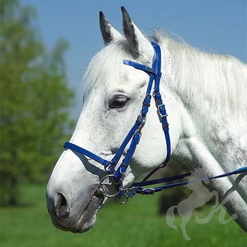 norton-synthetic-bridleheadcollar-ek-302051 (2).jpg