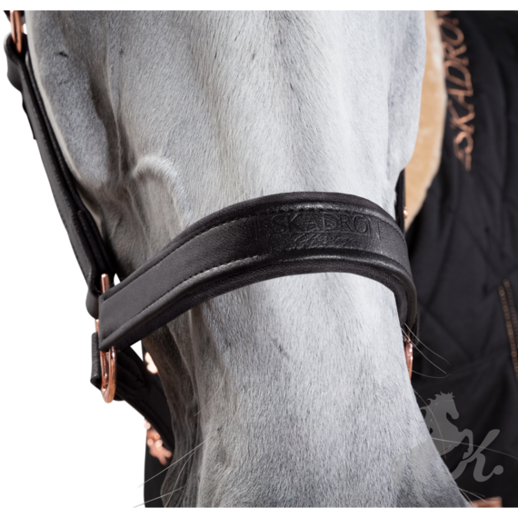 esk-420154-leather-h1eadcollar.png
